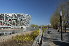 Bird nest(Beijing National Stadium) Royalty Free Stock Image