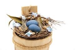Bird nest with blue eggs Stock Photos