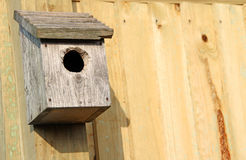 Bird nest box. Photo of a wooden bird nest box on garden fence.negative space ideal for text etc Royalty Free Stock Photos