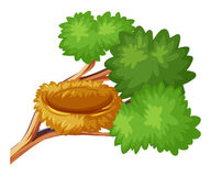 Bird nest on the branch. Illustration stock illustration