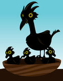 Bird in nest with chicks. Black bird in a nest with three baby chicks royalty free illustration