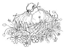 Bird on nest drawing Royalty Free Stock Photos