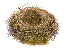 Empty bird nest. Bird nest empty isolated on white Stock Photos
