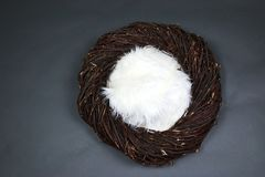 Bird Nest Fantasy Background Photo Prop Isolated on blue and gray. Brown Bird Nest Fantasy Background Photo Prop Isolated on gray stock photography