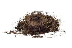 Bird Nest Isolated On White Background Stock Photography