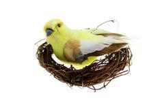 Bird nest. Little bird on a nest with a white background stock photo