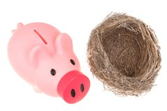 Bird nest and piggy bank. An empty bird nest and piggy bank isolated on white background Stock Photos