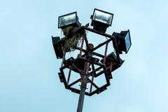 Bird nest on the pole of the spotlight. stock photos