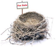 Bird nest - real estate '08 Royalty Free Stock Photos