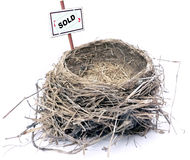 Bird nest - real estate '08 Royalty Free Stock Photography