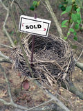 Bird nest - real estate 6. Real estate market concept photo of a bird nest royalty free stock photography