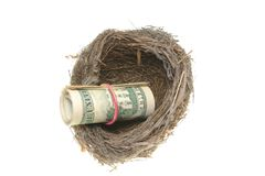 Bird nest and a roll of dollars Stock Photos