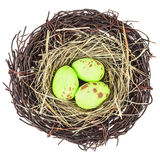 Bird's nest with three eggs isolated on white Stock Photo