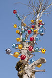 Bird Nest on a Tree. Vertical photo of many colorful bird nests on a tree Stock Photography
