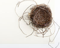 Bird Nest on Two-toned Background Royalty Free Stock Image
