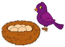 Bird and nest (vector clip-art) Royalty Free Stock Photo
