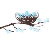 Bird Nest Royalty Free Stock Images