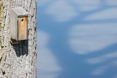Bird Nesting Box Stock Photography