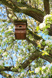 Bird nesting house in a tree Stock Photos