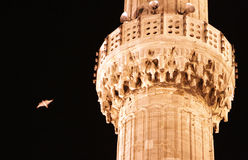 Bird in the night sky near the minaret of Mosque Royalty Free Stock Photo
