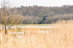 Bird observation tower Stock Image