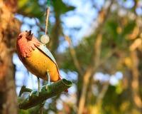 Bird ornament Stock Image