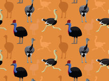 Bird Ostriches Wallpaper Royalty Free Stock Images