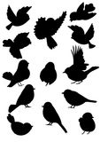 Bird Outlines Collection. Set of silhouettes cheerful spring birds Royalty Free Stock Images