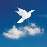 Bird over cloud Royalty Free Stock Photos
