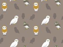 Bird Owl Wallpaper Stock Photos