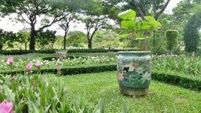 Bird painted lotus plant jar on green lawn Royalty Free Stock Image