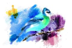 Bird painted with watercolors. Stock Images