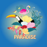 Bird of paradise and plants Royalty Free Stock Photography