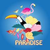 Bird of paradise and plants Stock Photo