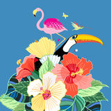 Bird of paradise and plants Stock Image