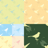 Bird pattern vector Royalty Free Stock Photography