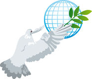 Bird of peace Stock Images