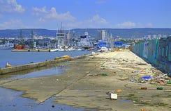 Bird pecking seashore garbage  Stock Images