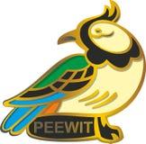 Bird peewit Royalty Free Stock Photography