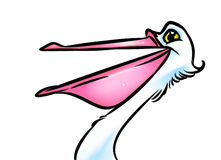 Bird pelican cartoon illustration Stock Photos