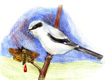 A bird with a pencil drawn on a branch with a punctured moth drawing. A bird with a pencil drawn on a branch with a punctured moth and a drop of blood drawing Royalty Free Stock Photos
