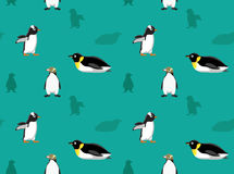 Bird Penguin Wallpaper 7 Royalty Free Stock Photography