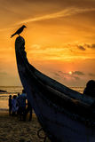 Bird perched on a boat rostrum at sunset with sea in background Stock Images
