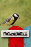Bird perched on a fence decorated with the word birdwatching Royalty Free Stock Image