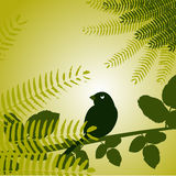 Bird with plants. Vector illustration Royalty Free Stock Photos