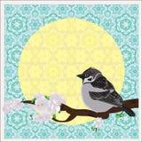 Bird on a plum tree Stock Image