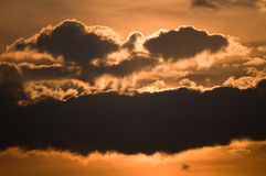 Bird of prey. An image of a bird of prey shaped by clouds and sunlight royalty free stock image