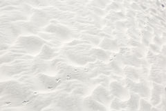 Bird Prints in the Sand Stock Images