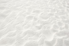 Bird Prints in the Sand Royalty Free Stock Photography
