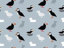 Bird Puffin Wallpaper Stock Image